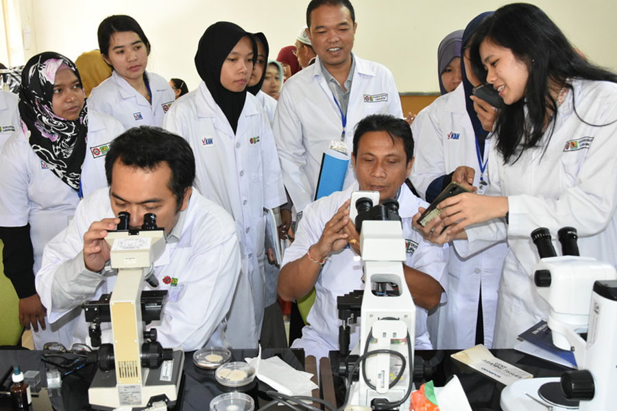 BIOTROP Conducts Training Course on Identification of Mycotoxin-producing Fungi