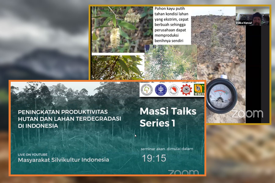 BIOTROP's Director Talks Over the Potential of Cajuput Trees in Post-Mining Land Reclamation